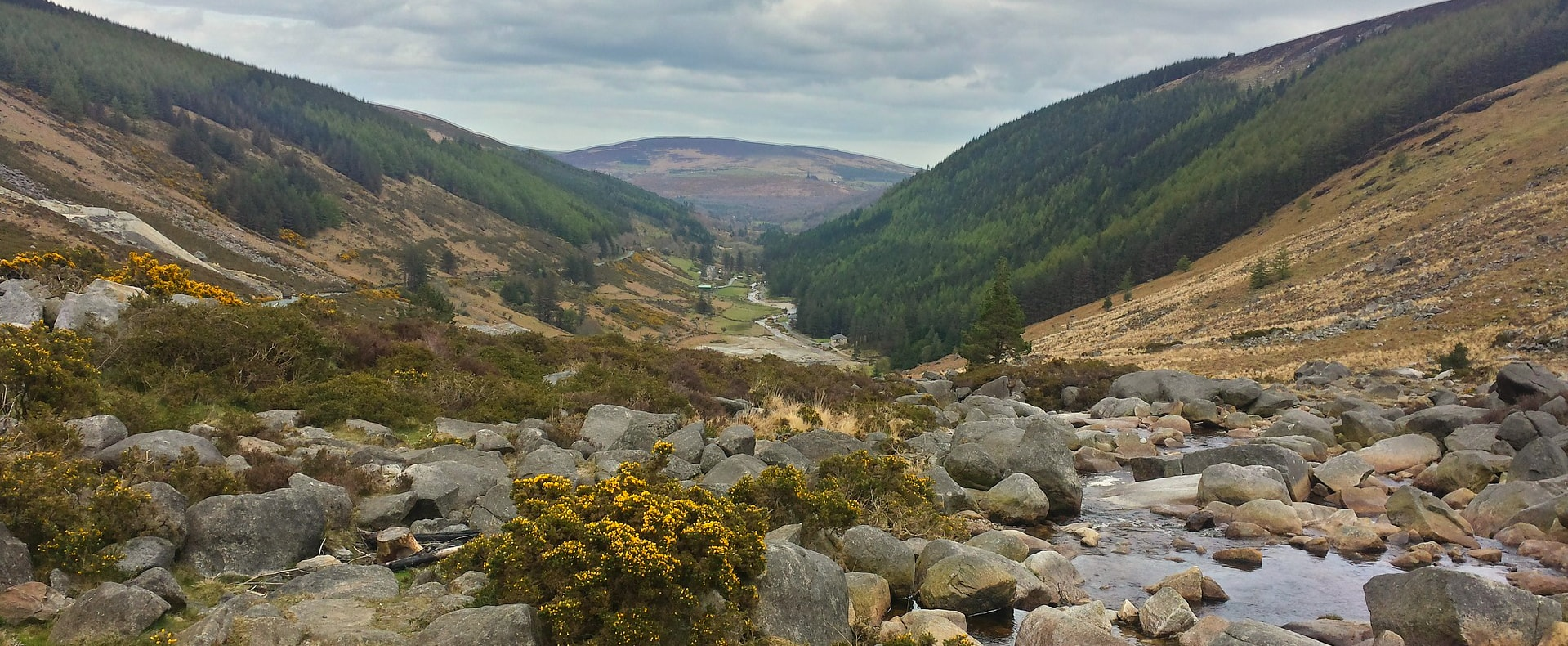 The County Wicklow