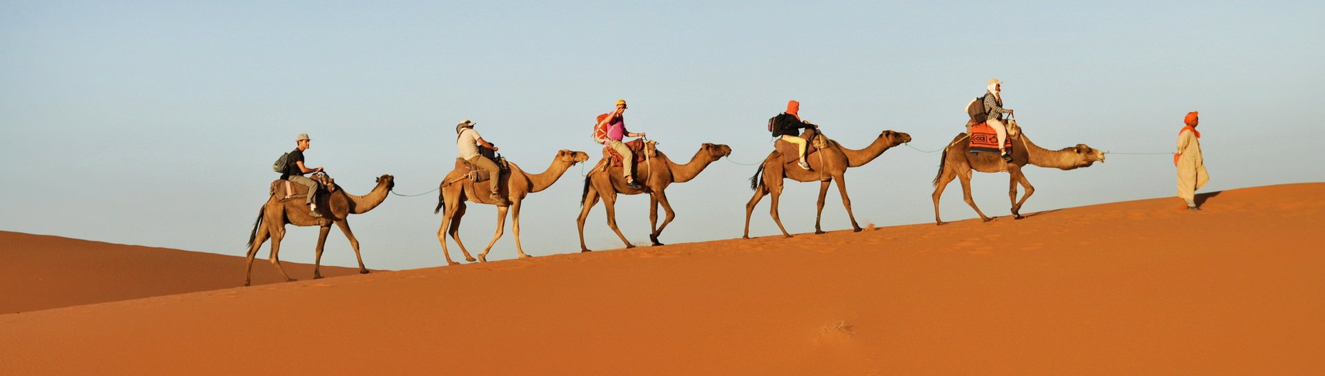 Camel trek in the Sahara Desert