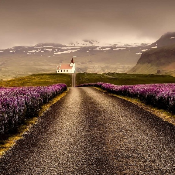 Best Iceland Family Vacation Packages