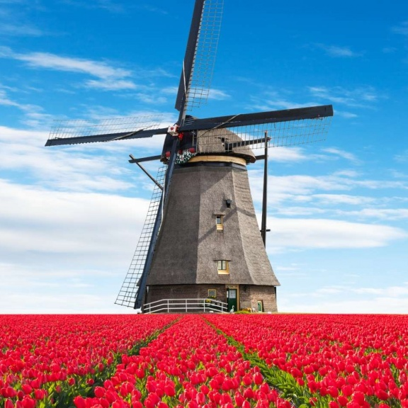Private & Small Group Tours to the Netherlands