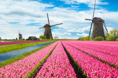 Best of Netherlands & Belgium in Small Group