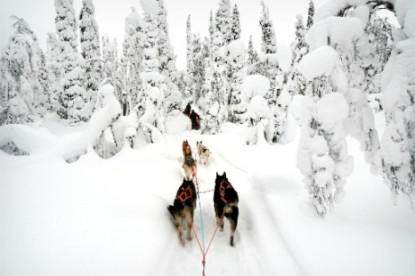 Winter Norway & Finland