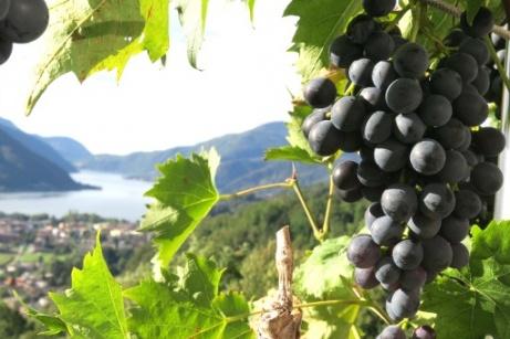 Tuscany: Gastronomic Tour