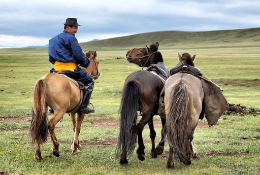 The Saga of Genghis Khan